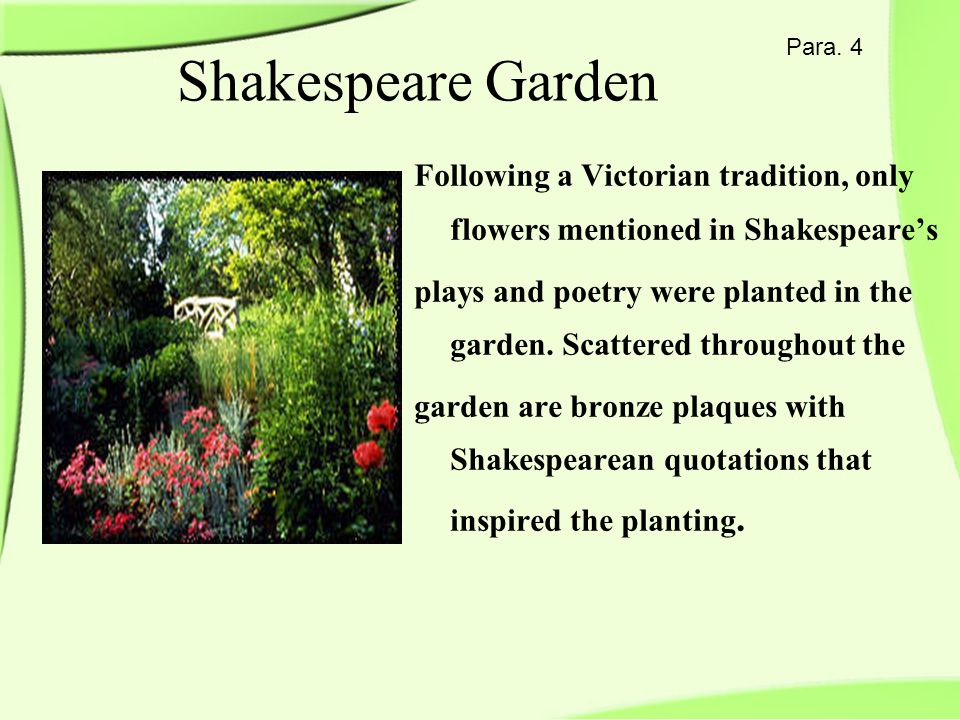 Para. 4 Shakespeare Garden Following a Victorian tradition, only flowers mentioned in Shakespeare's plays and poetry were planted in the garden. Scatt