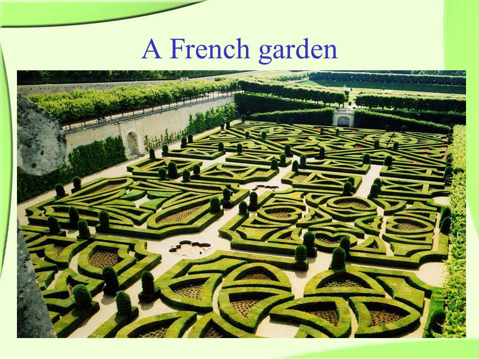 A French garden