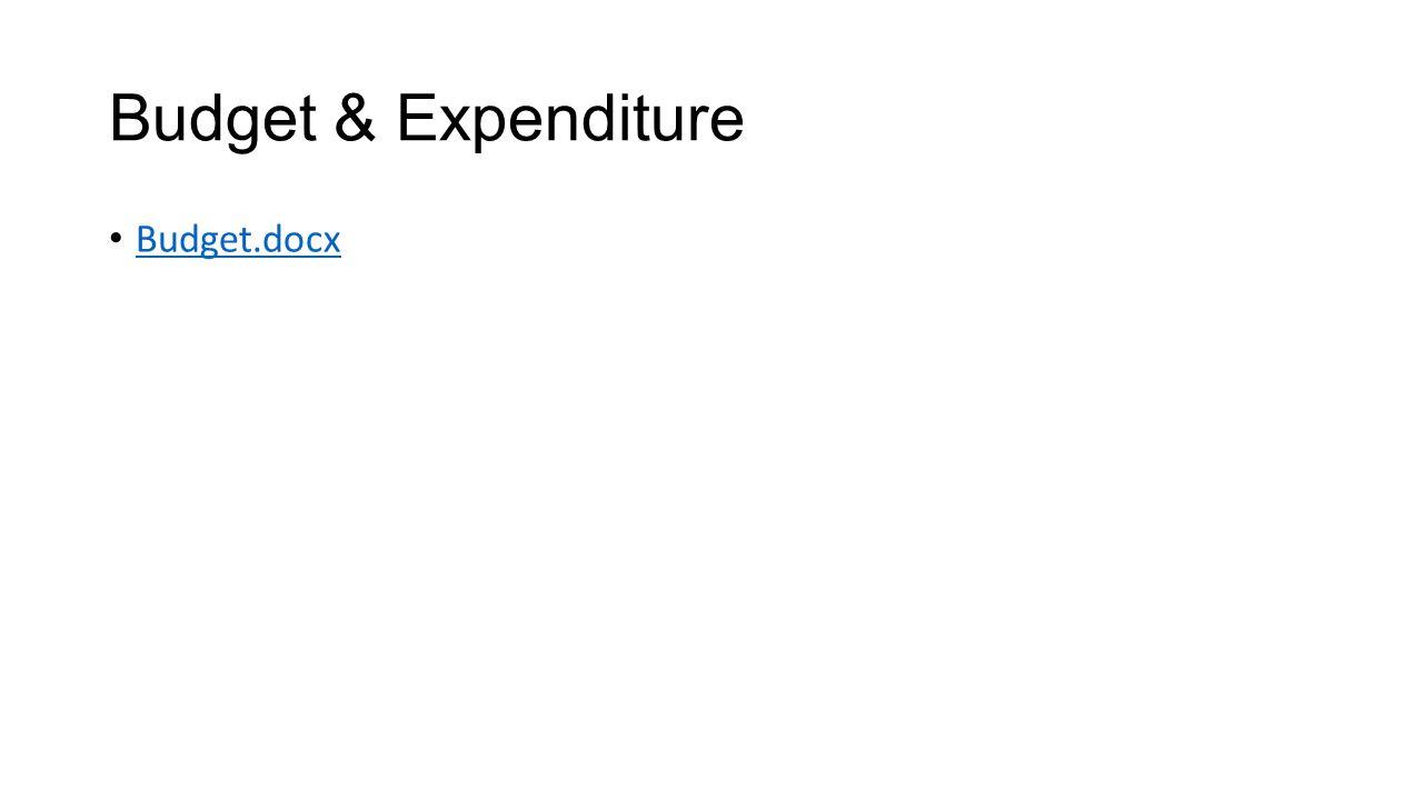 Budget & Expenditure Budget.docx