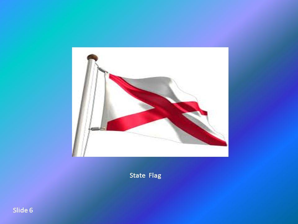 State Flag Slide 6