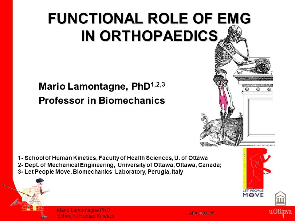 APA 6903 /05 Mario Lamontagne PhD School of Human Kinetics 1 Mario Lamontagne, PhD 1,2,3 Professor in Biomechanics 1- School of Human Kinetics, Faculty of Health Sciences, U.