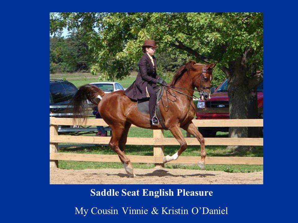 Saddle Seat English Pleasure My Cousin Vinnie & Kristin O'Daniel