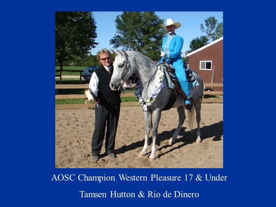 AOSC Champion Western Pleasure 17 & Under Tamsen Hutton & Rio de Dinero