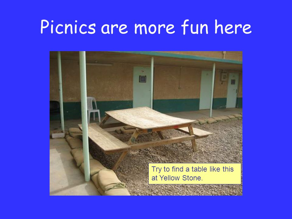 Picnics are more fun here Try to find a table like this at Yellow Stone.