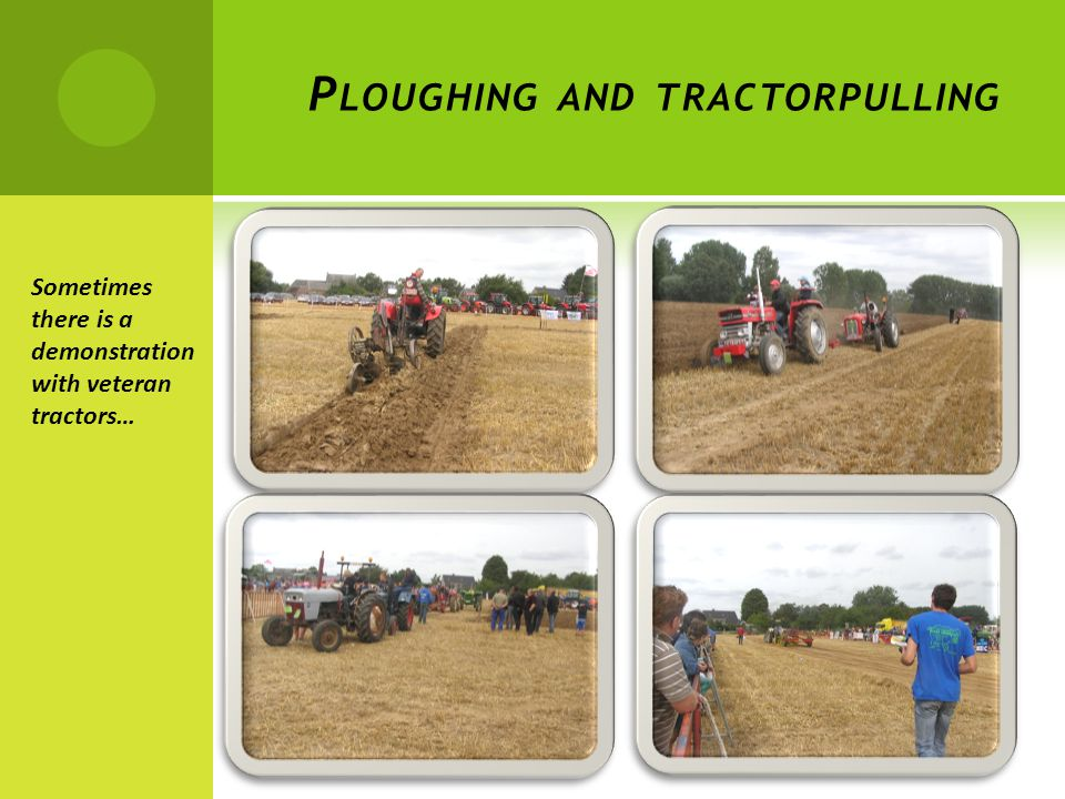 P LOUGHING AND TRACTORPULLING Sometimes there is a demonstration with veteran tractors…