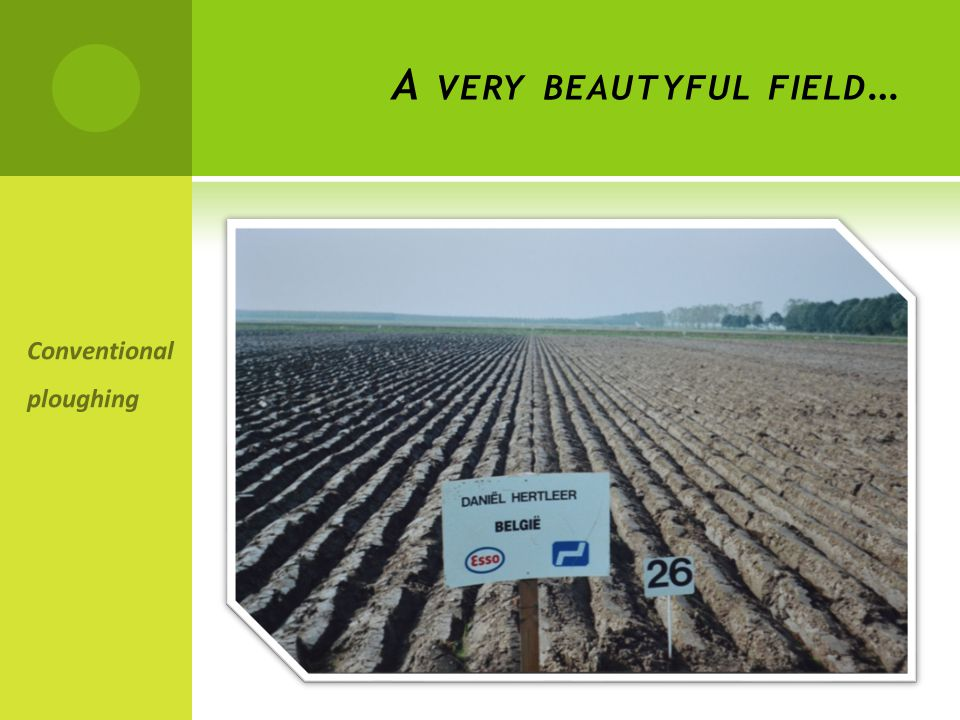 A VERY BEAUTYFUL FIELD … Conventional ploughing