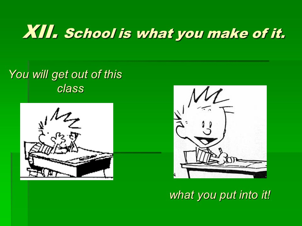 XII. School is what you make of it. You will get out of this class what you put into it!
