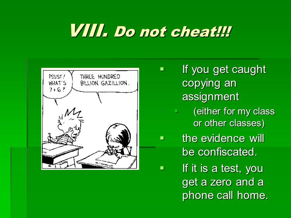 VIII. Do not cheat!!.