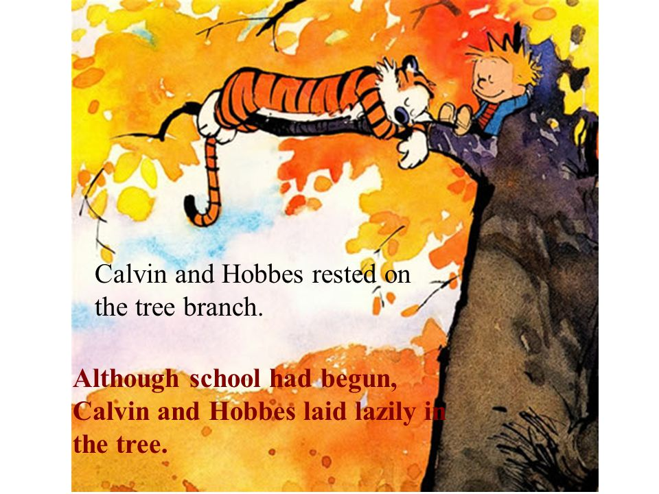 Although school had begun, Calvin and Hobbes laid lazily in the tree.