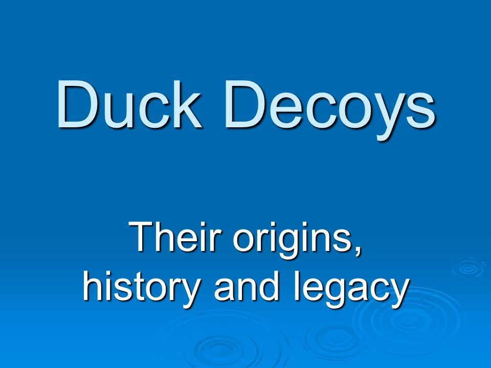 Duck Decoys Their origins, history and legacy