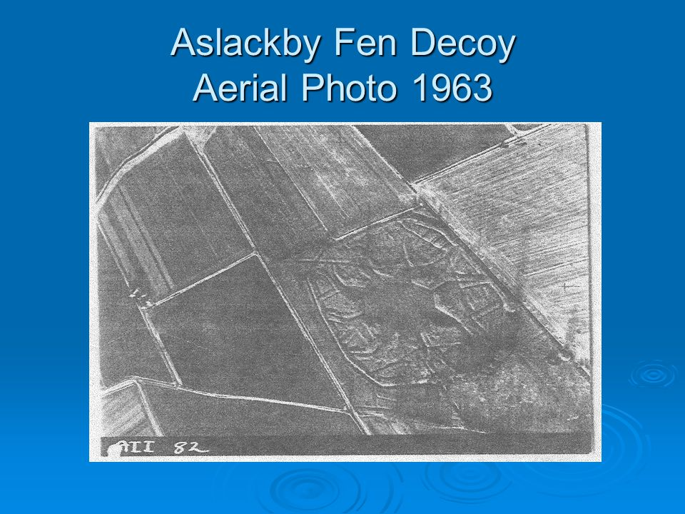 Aslackby Fen Decoy Aerial Photo 1963