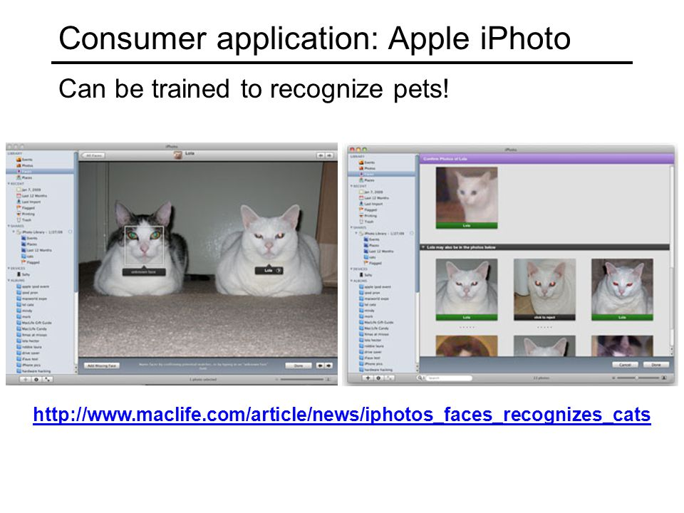 Consumer application: Apple iPhoto Can be trained to recognize pets.