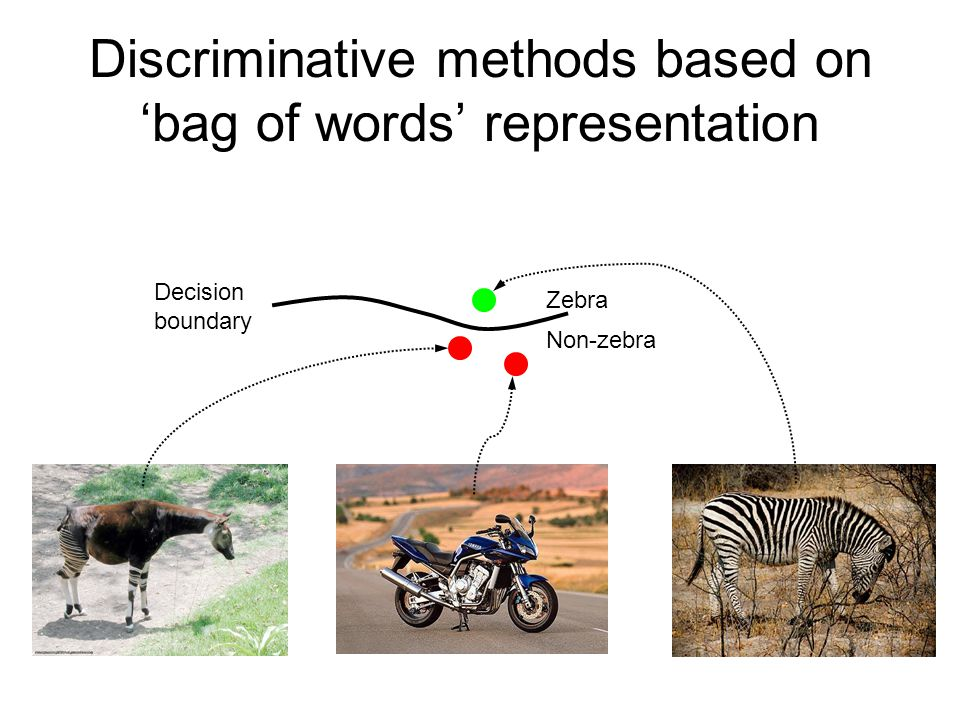 Zebra Non-zebra Decision boundary Discriminative methods based on 'bag of words' representation