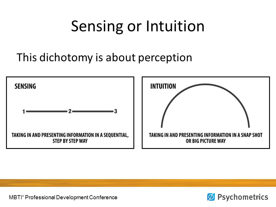 Sensing or Intuition 14 This dichotomy is about perception MBTI ® Professional Development Conference