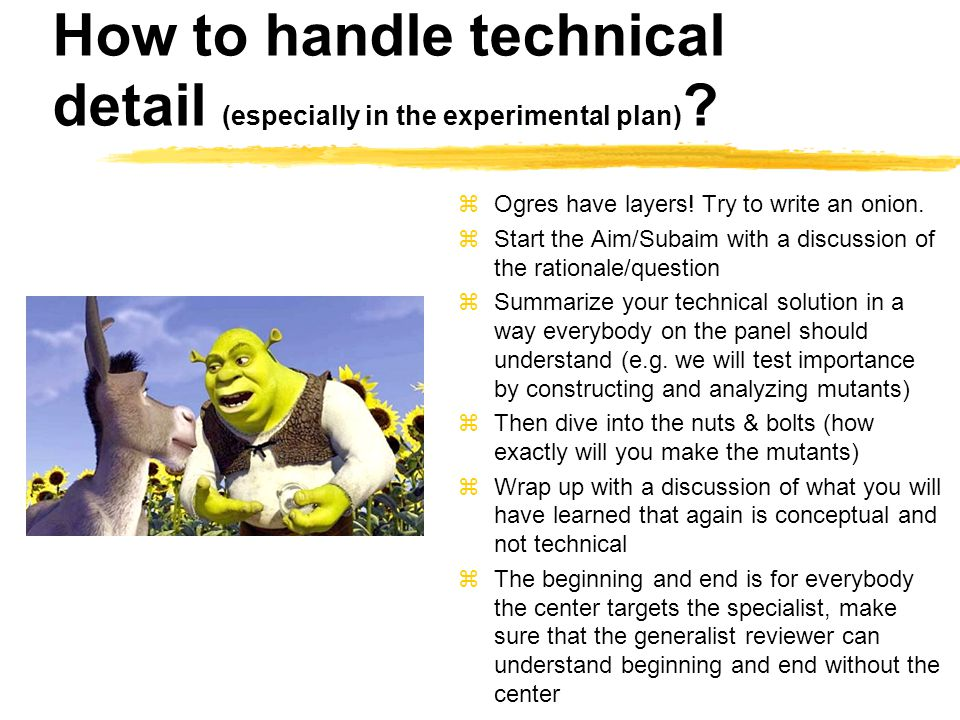 How to handle technical detail (especially in the experimental plan) .
