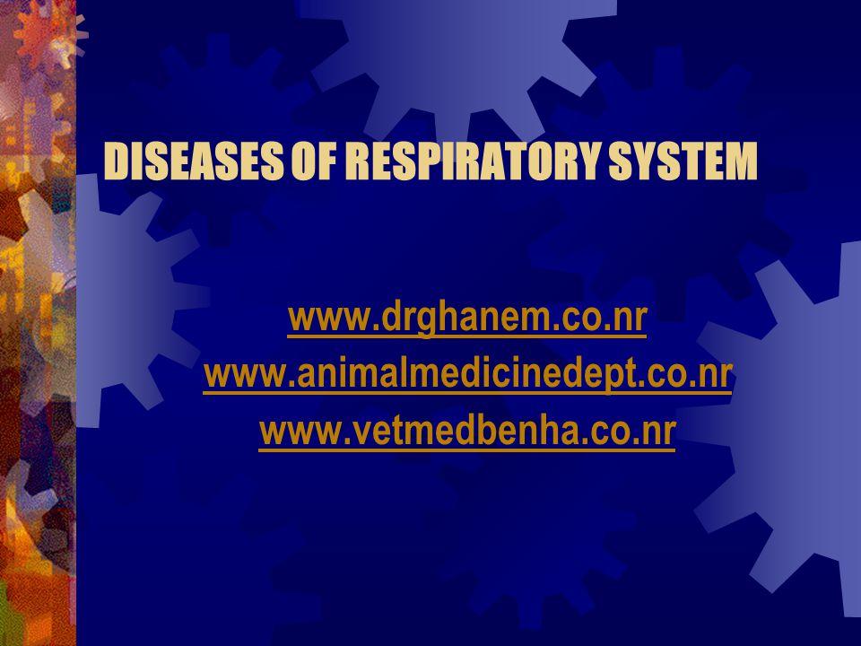 DISEASES OF RESPIRATORY SYSTEM www.drghanem.co.nr www.animalmedicinedept.co.nr www.vetmedbenha.co.nr