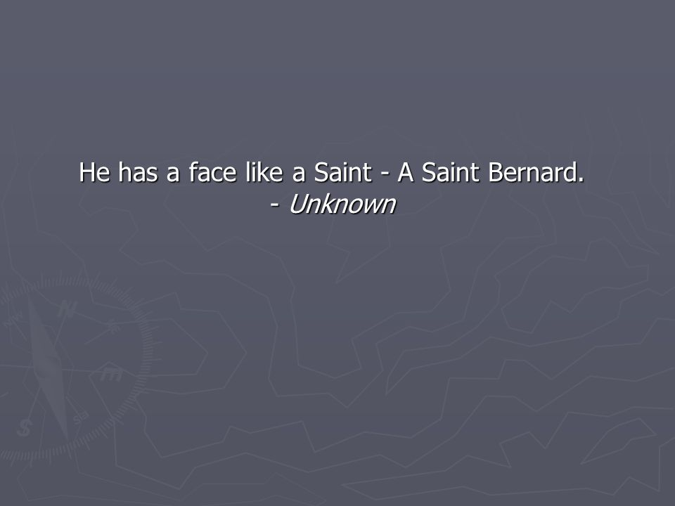 He has a face like a Saint - A Saint Bernard. - Unknown