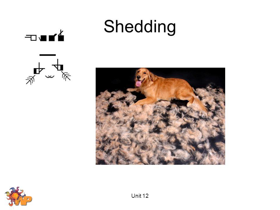 Unit 12 Shedding
