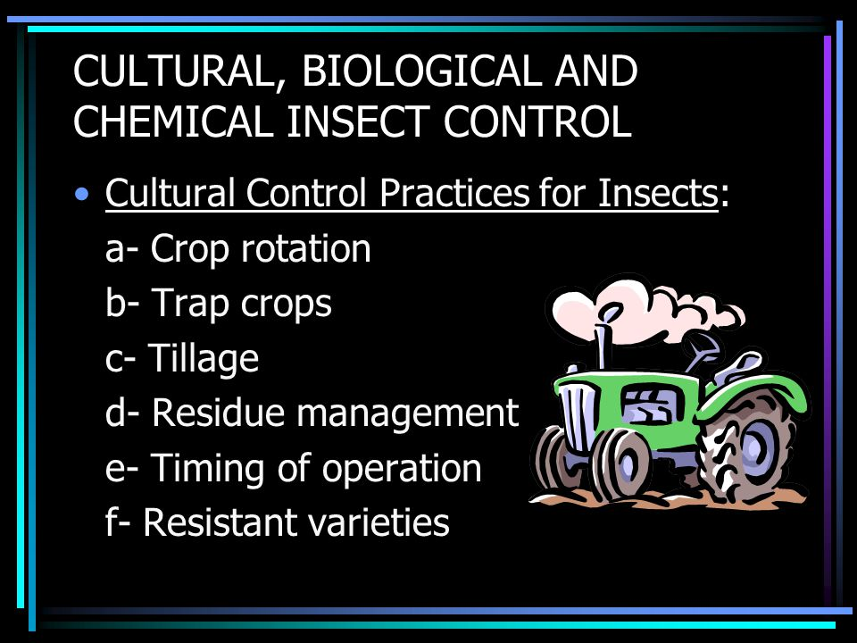 CULTURAL, BIOLOGICAL AND CHEMICAL INSECT CONTROL Cultural Control Practices for Insects: a- Crop rotation b- Trap crops c- Tillage d- Residue management e- Timing of operation f- Resistant varieties