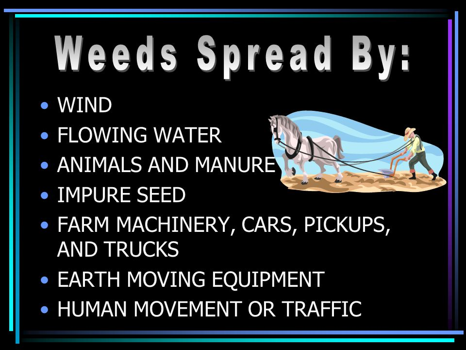 WIND FLOWING WATER ANIMALS AND MANURE IMPURE SEED FARM MACHINERY, CARS, PICKUPS, AND TRUCKS EARTH MOVING EQUIPMENT HUMAN MOVEMENT OR TRAFFIC