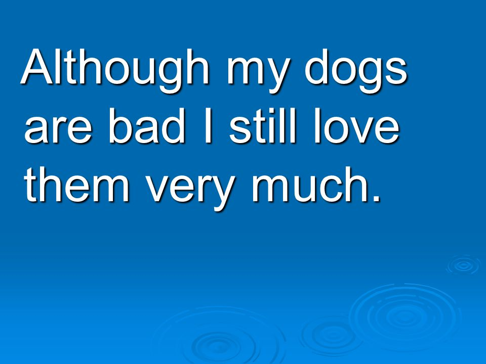 Although my dogs are bad I still love them very much.