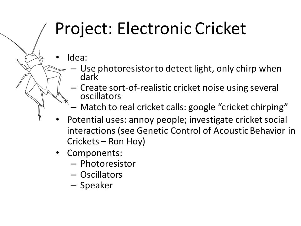 Structure of a Cricket Call Field cricket: Syll.frequency 4- 5 kHz.