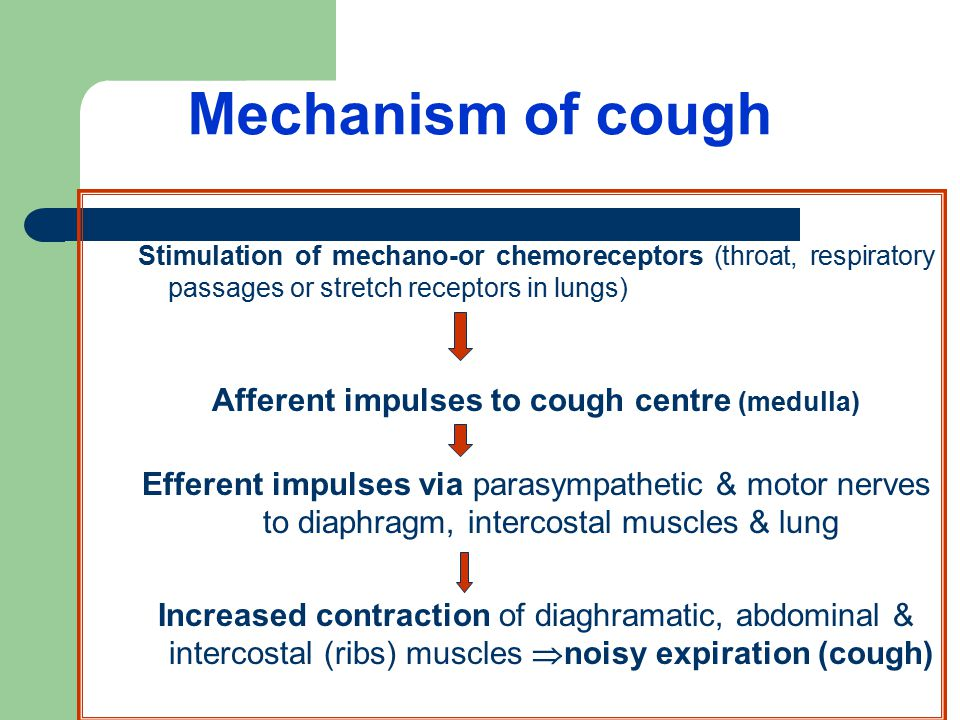 Mechanism of cough Stimulation of mechano-or chemoreceptors (throat, respiratory passages or stretch receptors in lungs) Afferent impulses to cough centre (medulla) Efferent impulses via parasympathetic & motor nerves to diaphragm, intercostal muscles & lung Increased contraction of diaghramatic, abdominal & intercostal (ribs) muscles  noisy expiration (cough)