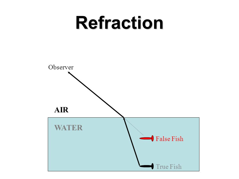 Refraction Examples Light slows down when it goes from air into water and bends toward the normal.