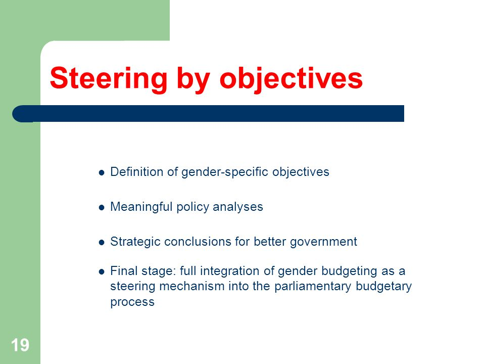 19 Steering by objectives Definition of gender-specific objectives Meaningful policy analyses Strategic conclusions for better government Final stage: full integration of gender budgeting as a steering mechanism into the parliamentary budgetary process
