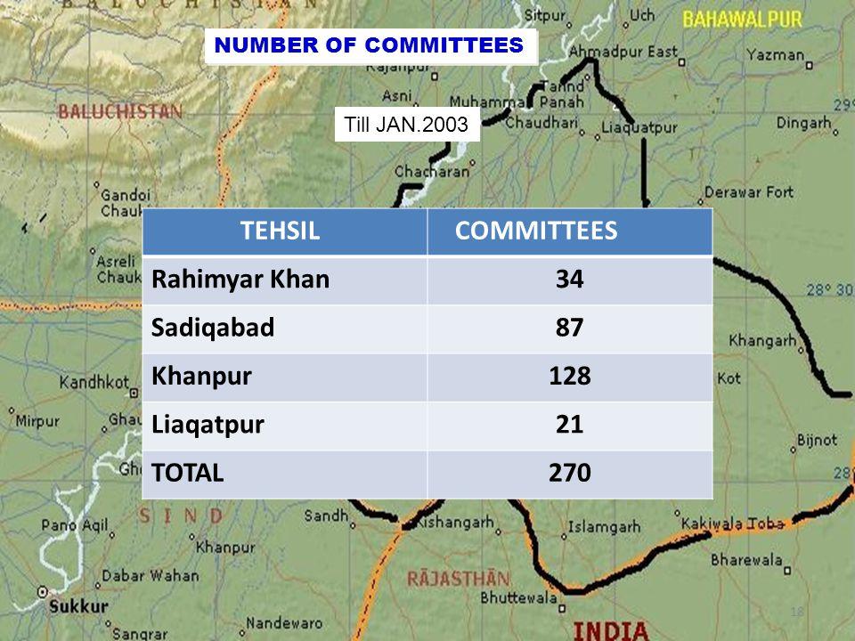 NUMBER OF COMMITTEES Till JAN.2003 TEHSIL COMMITTEES Rahimyar Khan34 Sadiqabad87 Khanpur128 Liaqatpur21 TOTAL270 18