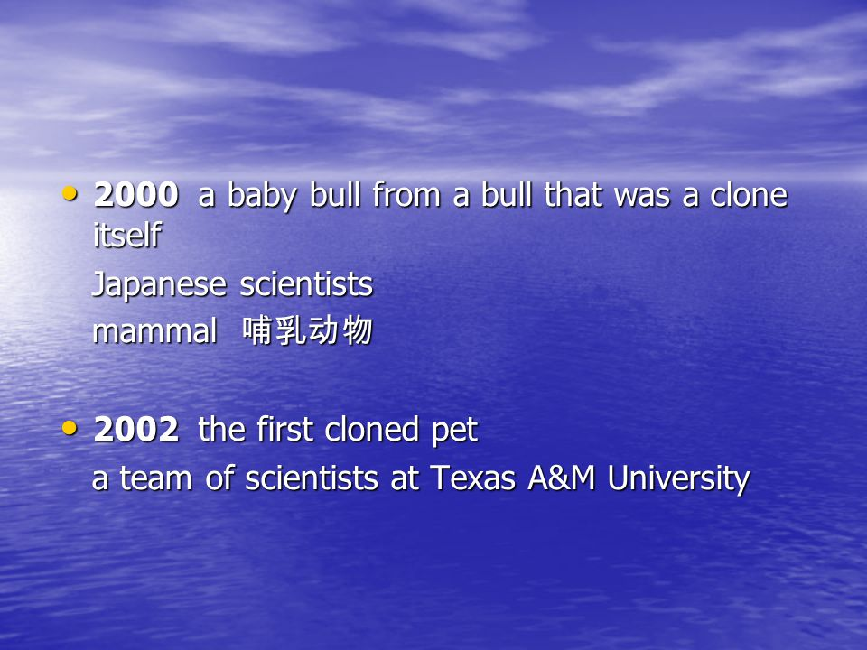 2000 a baby bull from a bull that was a clone itself 2000 a baby bull from a bull that was a clone itself Japanese scientists Japanese scientists mammal 哺乳动物 mammal 哺乳动物 2002 the first cloned pet 2002 the first cloned pet a team of scientists at Texas A&M University a team of scientists at Texas A&M University