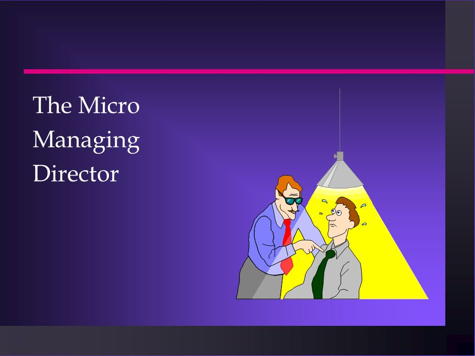 The Micro Managing Director