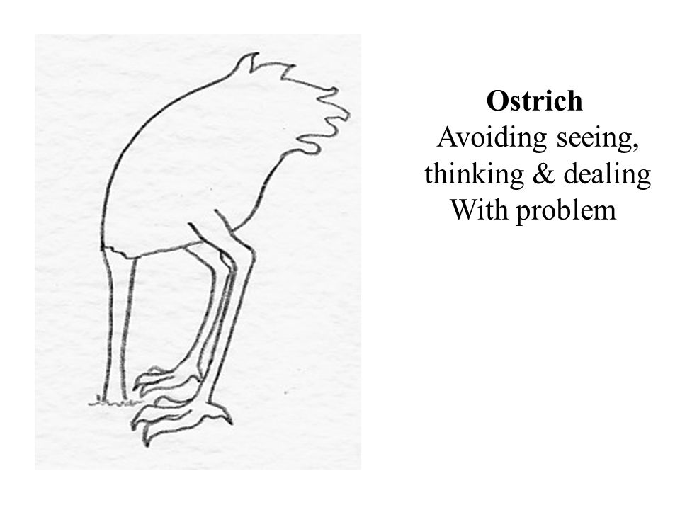Ostrich Avoiding seeing, thinking & dealing With problem