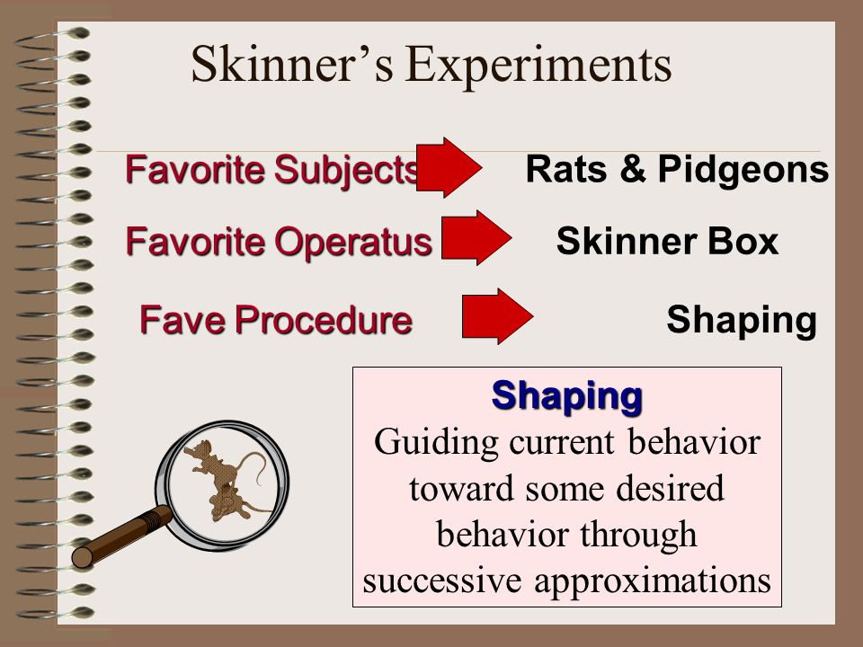 Skinner's Experiments Favorite Subjects Favorite Subjects Rats & Pidgeons Favorite Operatus Favorite OperatusSkinner Box Fave Procedure Fave Procedure Shaping Shaping Guiding current behavior toward some desired behavior through successive approximations