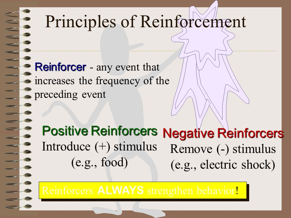 Principles of Reinforcement Reinforcer Reinforcer - any event that increases the frequency of the preceding event Positive Reinforcers Introduce (+) stimulus (e.g., food) Negative Reinforcers Remove (-) stimulus (e.g., electric shock) Reinforcers ALWAYS strengthen behavior!