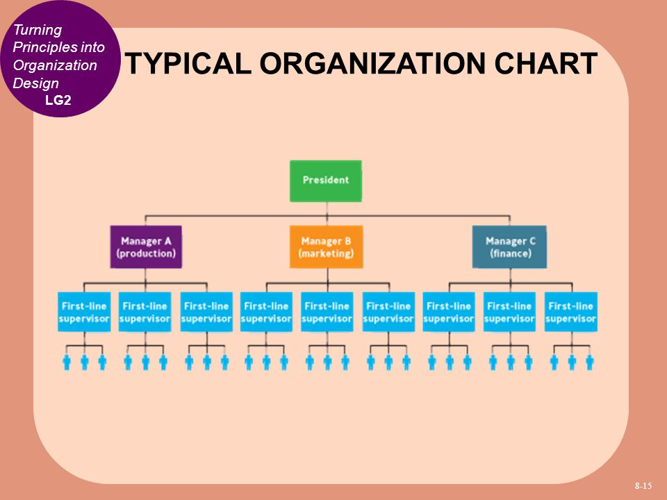 TYPICAL ORGANIZATION CHART LG2 Turning Principles into Organization Design 8-15