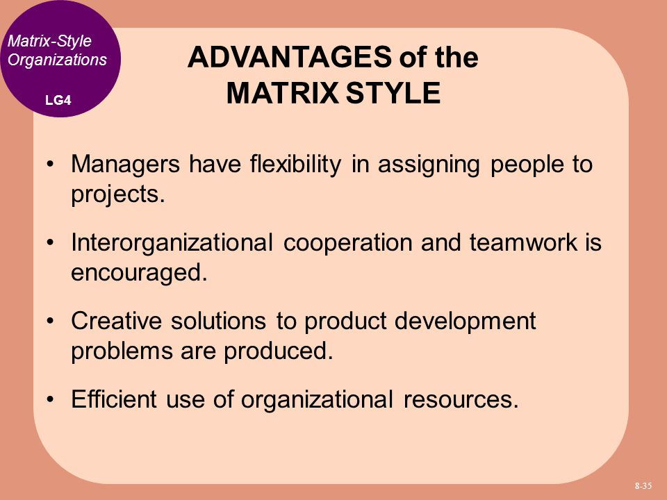 Managers have flexibility in assigning people to projects. Interorganizational cooperation and teamwork is encouraged. Creative solutions to product d