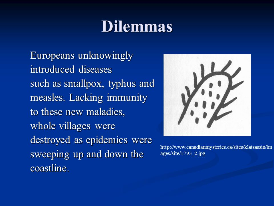 Dilemmas Europeans unknowingly introduced diseases such as smallpox, typhus and measles. Lacking immunity to these new maladies, whole villages were d