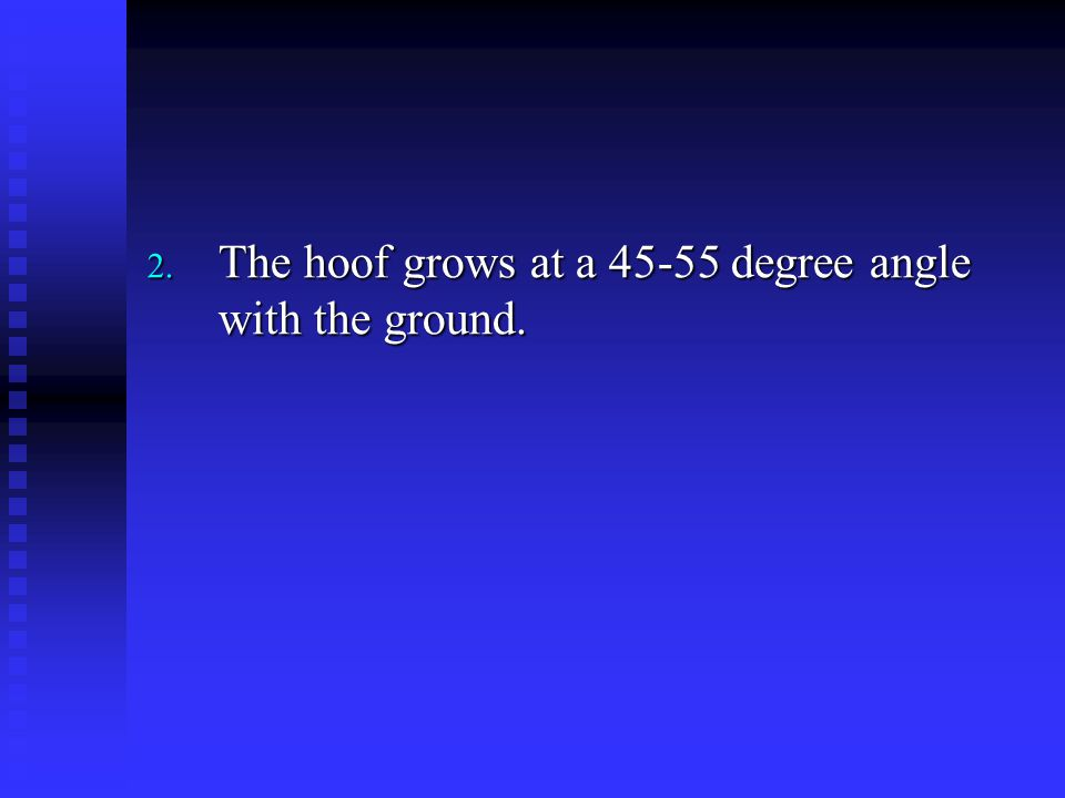 2. The hoof grows at a 45-55 degree angle with the ground.