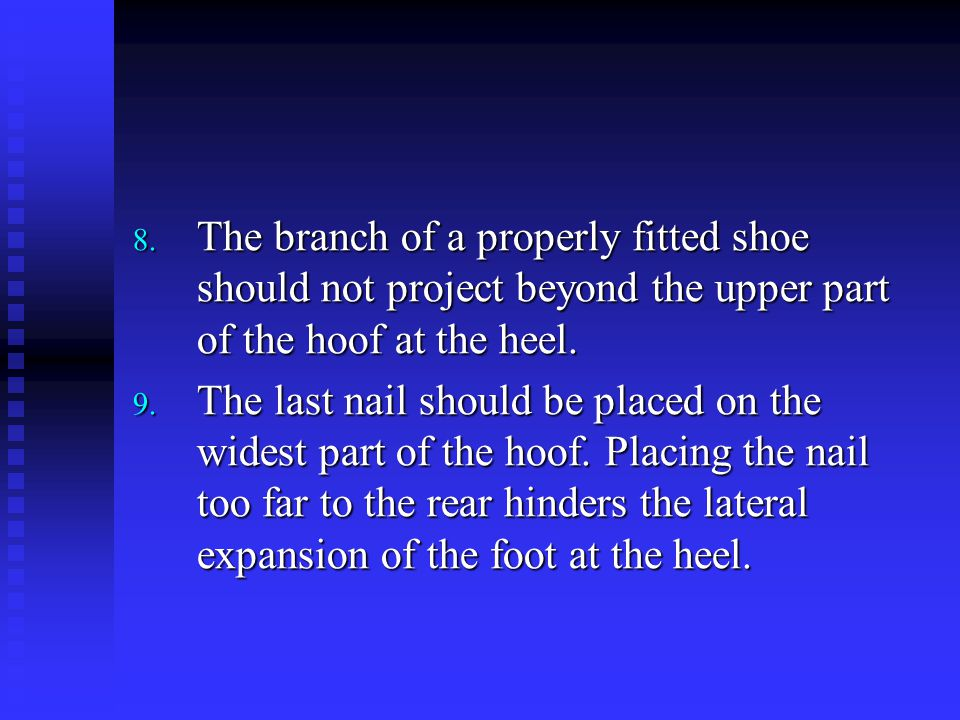 8. The branch of a properly fitted shoe should not project beyond the upper part of the hoof at the heel. 9. The last nail should be placed on the wid