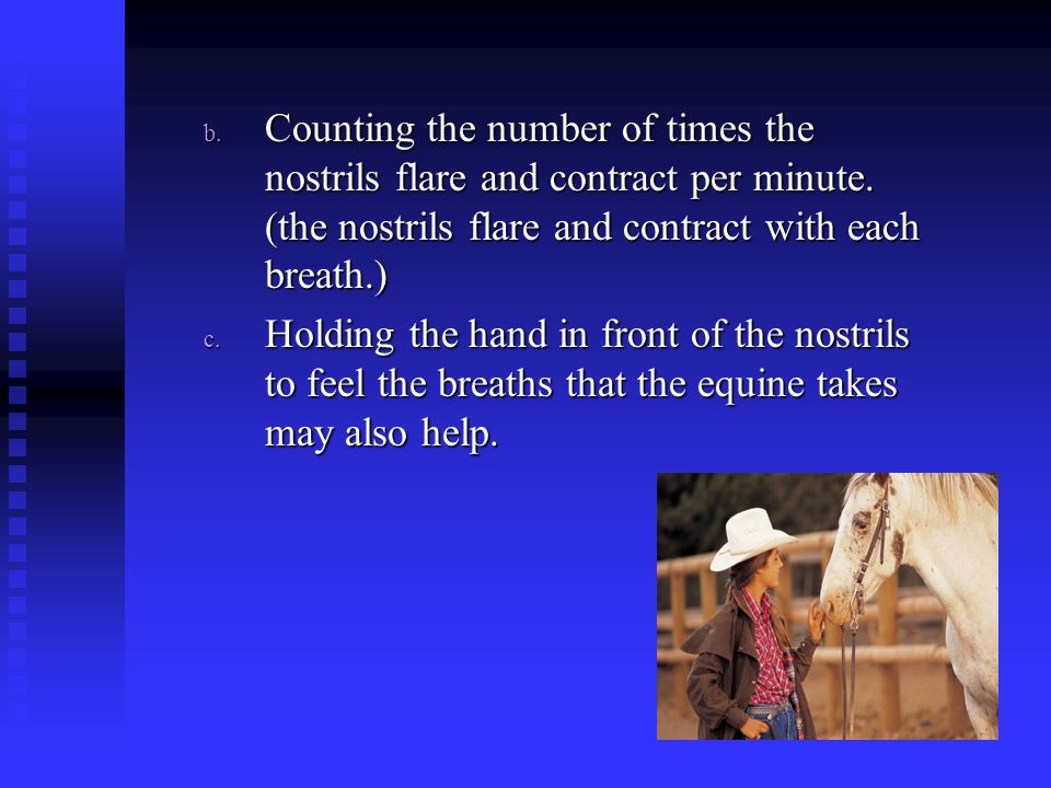 b. Counting the number of times the nostrils flare and contract per minute. (the nostrils flare and contract with each breath.) c. Holding the hand in