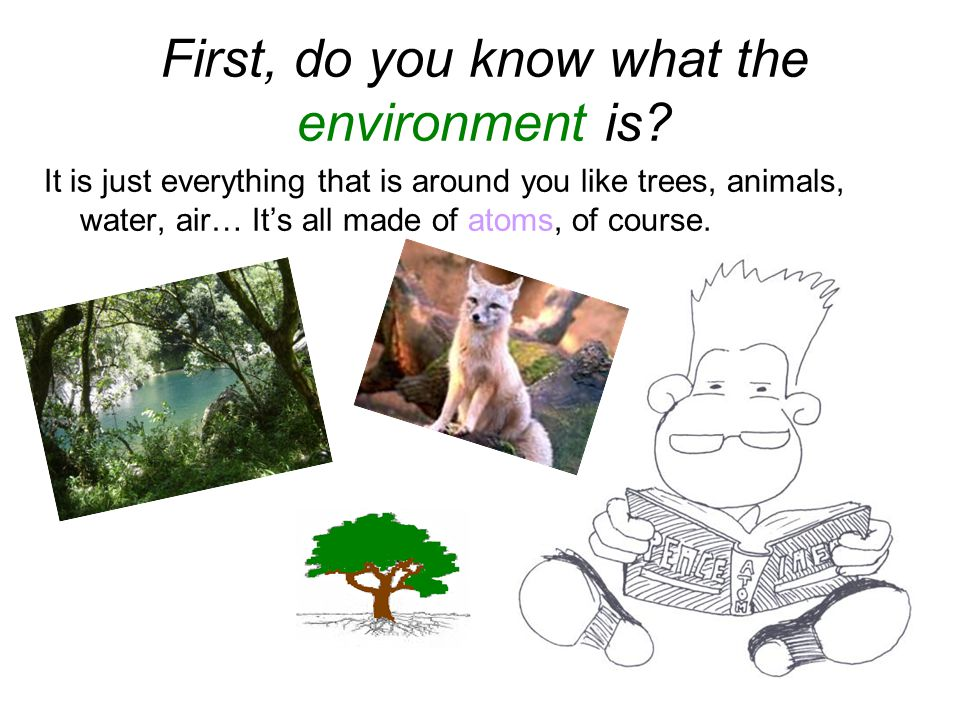 32 First, do you know what the environment is.