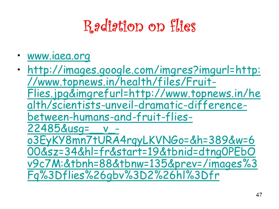 47 Radiation on flies www.iaea.org http://images.google.com/imgres imgurl=http: //www.topnews.in/health/files/Fruit- Flies.jpg&imgrefurl=http://www.topnews.in/he alth/scientists-unveil-dramatic-difference- between-humans-and-fruit-flies- 22485&usg=__v_- o3EyKY8mn7tURA4rqyLKVNGo=&h=389&w=6 00&sz=34&hl=fr&start=19&tbnid=dtng0PEbO v9c7M:&tbnh=88&tbnw=135&prev=/images%3 Fq%3Dflies%26gbv%3D2%26hl%3Dfrhttp://images.google.com/imgres imgurl=http: //www.topnews.in/health/files/Fruit- Flies.jpg&imgrefurl=http://www.topnews.in/he alth/scientists-unveil-dramatic-difference- between-humans-and-fruit-flies- 22485&usg=__v_- o3EyKY8mn7tURA4rqyLKVNGo=&h=389&w=6 00&sz=34&hl=fr&start=19&tbnid=dtng0PEbO v9c7M:&tbnh=88&tbnw=135&prev=/images%3 Fq%3Dflies%26gbv%3D2%26hl%3Dfr
