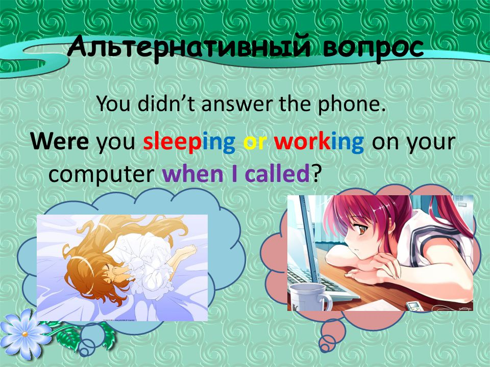 Альтернативный вопрос You didn't answer the phone. Were you sleeping or working on your computer when I called?
