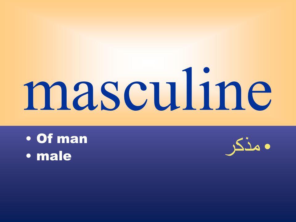 masculine Of man male مذكر