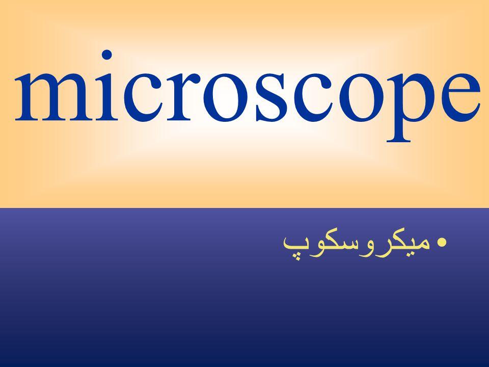 microscope ميكروسكوپ