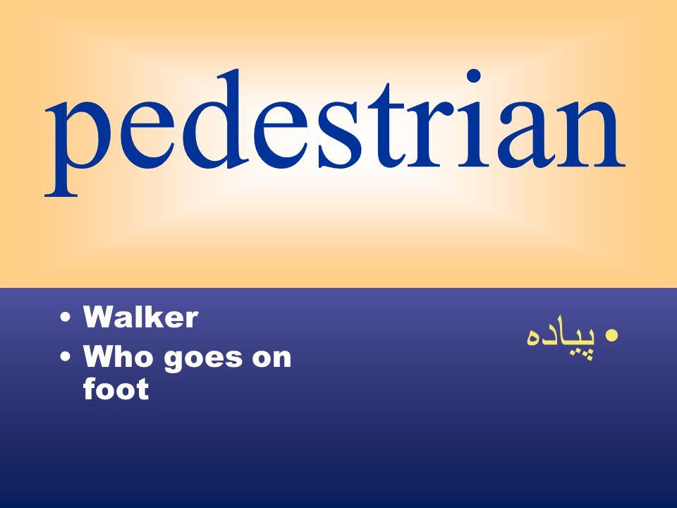 pedestrian Walker Who goes on foot پياده