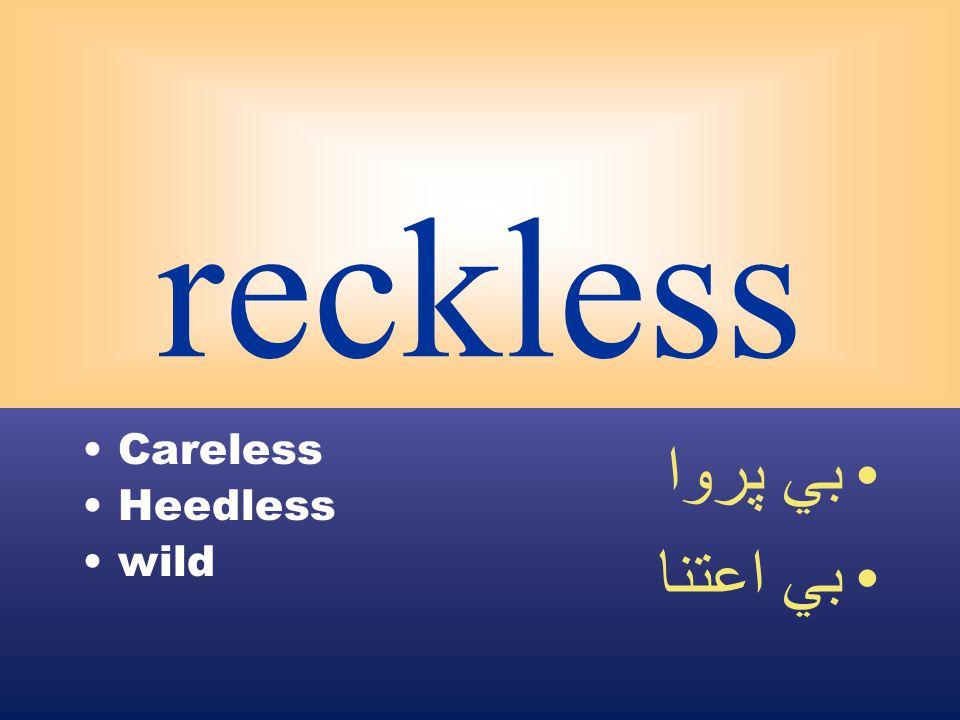 reckless Careless Heedless wild بي پروا بي اعتنا