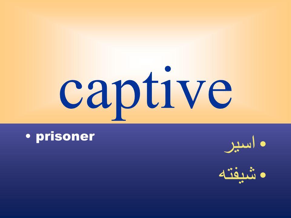 captive prisoner اسير شيفته