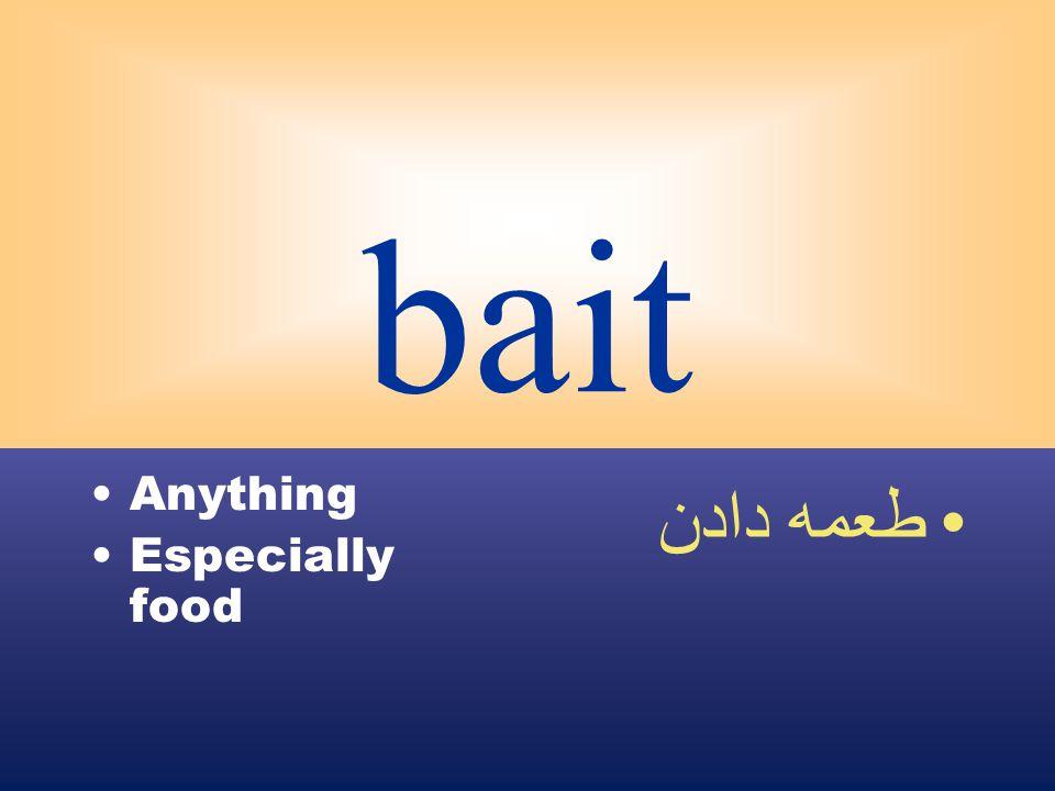 bait Anything Especially food طعمه دادن